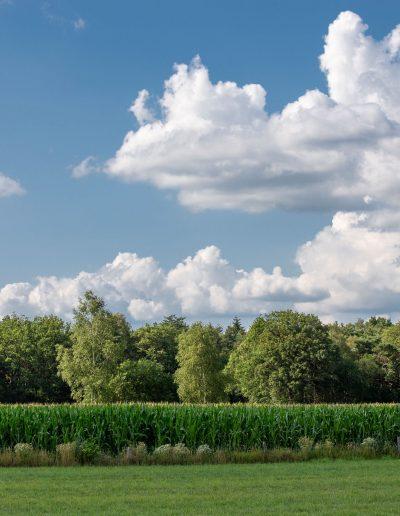 038-Braakhekkeweg 5 - Harfsen- Van der Chijs Makelaardij- foto-©www.paulinejoosten