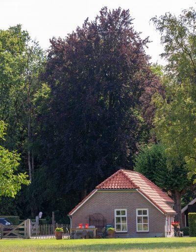 056-Braakhekkeweg 5 - Harfsen- Van der Chijs Makelaardij- foto-©www.paulinejoosten